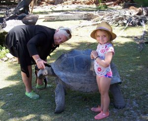 Some of the interesting wildlife of the Seychelles. And a tortoise.