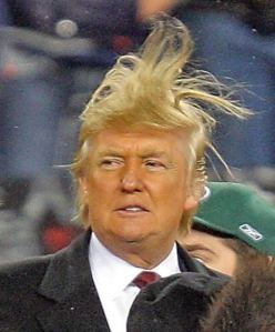 Due to the sensitive nature of today's topic, no relevant pictures can be posted. So here's a picture of Donald Trump's hair rising up to strike down his enemies.