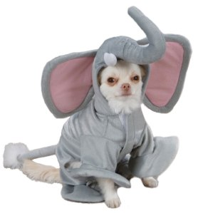 PE_Elephant_dog_costume_pet