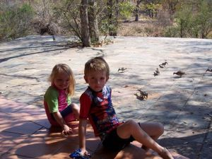 The children, slowly depriving some hornbills and a francolin of the power of flight.